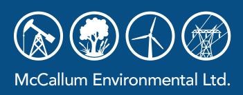 McCallum Environmental Ltd.